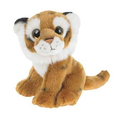 Tiger, Wild Watcher