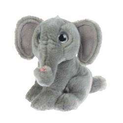 Elefant, afrikansk elefant, Wild Watcher