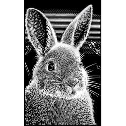 Kanin, sølvfarvet MINI kradsfolie/skrabefolie, PPSFM1