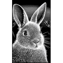 Kanin, sølvfarvet MINI kradsfolie/skrabefolie, PPSFM11