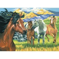Mal efter tal (Senior), Heste. Reeves PL51