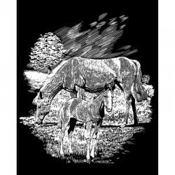 Hest og føl, sølvfarvet kradsfolie/skrabefolie, PPSF56