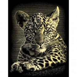 Leopardunge, guldfarvet kradsfolie/skrabefolie, PPCF25